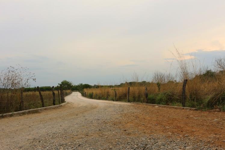Open Road Colon_Fotor